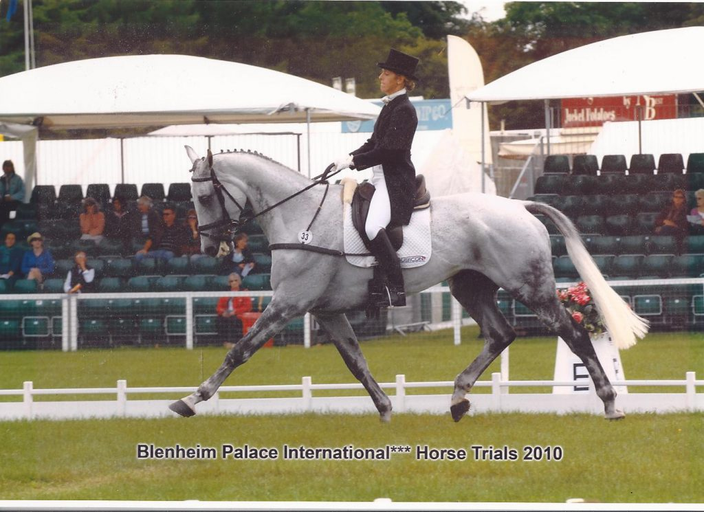 Marie Ryan Competing Steeling Time at Blenheim